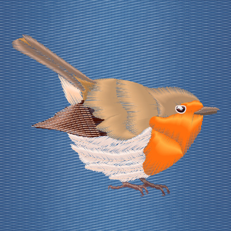 redbreast: Embroidery robin bird on blue denim background. Vector illustrations modern design