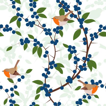 redbreast: Seamless pattern of Blackthorn berries and robin birds