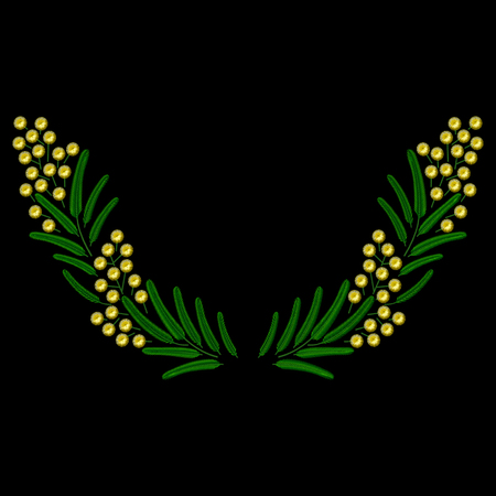 weeds: Vector Embroidery spring blossoming Mimosa branch illustrations