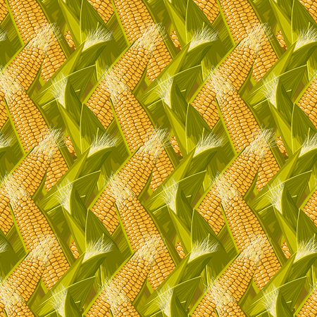 Corn maize realistic seamless pattern vector illustration.