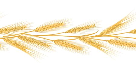 Ears of wheat landscape border seamless pattern for banners Vettoriali
