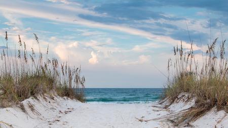 Sandy beach pathway through the sand dunes to the beach.