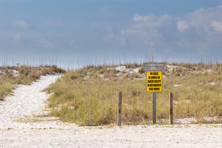Sand pathway across the sand dunes with a No Dogs allowed sign. Stock Photo
