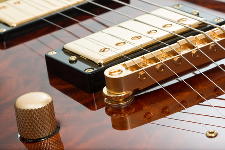 Guitar pickup, strings, and knob close up.