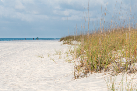 White sandy beach with sea oats and blue sky.