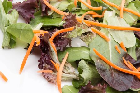Salad greens with carrots and spinach.
