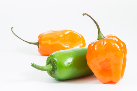 Jalapeno and habanero peppers on white background.
