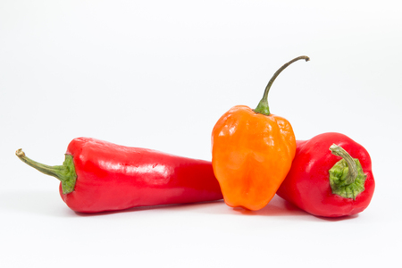 Chili and habanero peppers on white background. Banco de Imagens