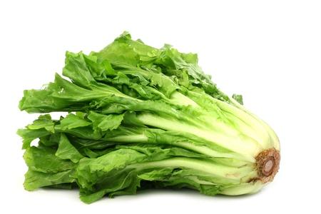endivia: ensalada fresca endibia en un fondo blanco
