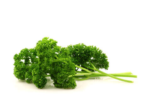 freshly cut green parsley on a white background  photo