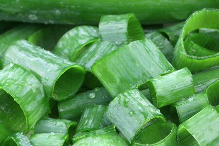 background of a bunch of freshly cut green onions  photo
