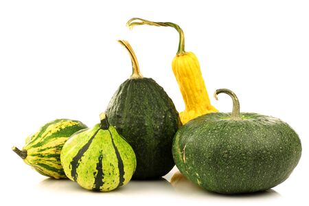 green, striped and yellow ornamental pumpkins on a white background  photo