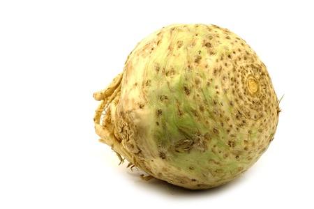 var: one fresh celery root  Apium graveolens var  rapaceum  on a white background