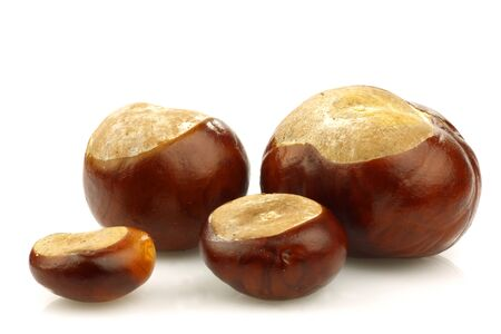 bunch of chestnuts on a white background