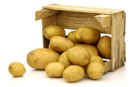 freshly harvested potatoes coming from a wooden box on a white background  版權商用圖片
