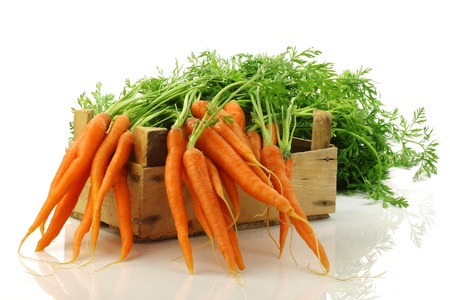 carrots: zanahorias reci�n cosechadas en una caja de madera sobre un fondo blanco