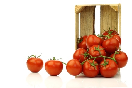 fresh tomatoes in a wooden crate on a white background  photo