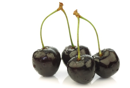 bunch of fresh black sweet cherries on a white background  Фото со стока