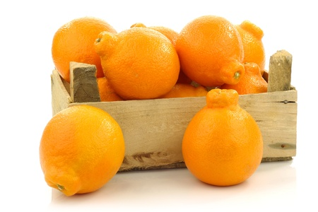 fresh and colorful Minneola tangelo fruit in a wooden crate on a white background Stock Photo - 15081213