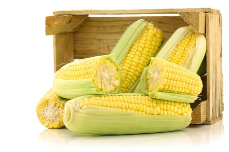 corn on the cob and a cut one in a wooden crate on a white background  photo