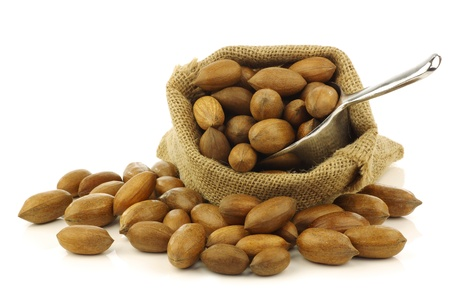 anti oxidants: tasty pecan nuts in a burlap bag with a metal scoop on a white background