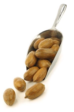 anti oxidants: tasty pecan nuts in a metal scoop on a white background