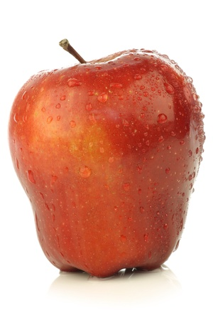 ambrosia: Fresh and delicious red Ambrosia apples on a white background