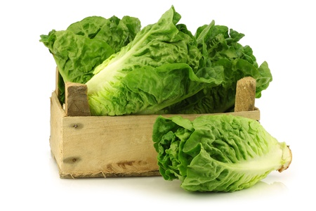 fresh  little gem  lettuce in a wooden crate on a white background  photo