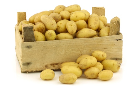 dutch: freshly harvested dutch seed potatoes  krieltjes  in a wooden box on a white background