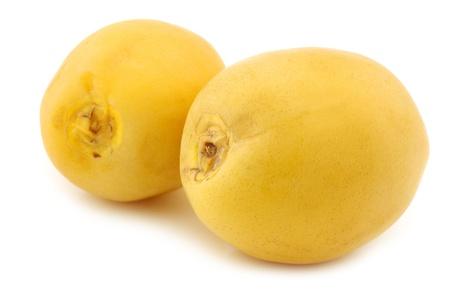 dactylifera: freshly harvested dates  Phoenix dactylifera  on a white background