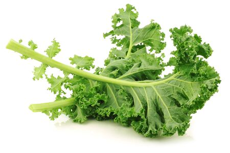 kale: freshly harvested  kale cabbage stems on a white background