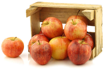 fresh  royal gala  apples in a wooden crate on a white background photo