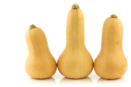 gourds: bottle shaped butternut pumpkins on a white background Stock Photo