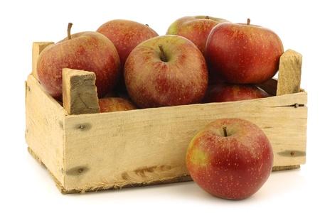 tarta de manzana: Manzanas tradicionales holandeses llamaron goudrenet utiliza para hacer el pastel de manzana en una caja de madera sobre un fondo blanco