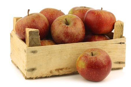 Traditional Dutch apples called  goudrenet  used for making apple pie in a wooden crate on a white background