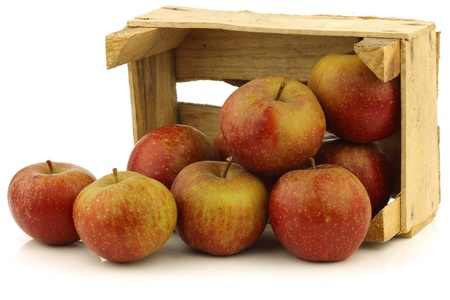 Traditional Dutch apples called  goudrenet  used for making apple pie in a wooden crate on a white background photo