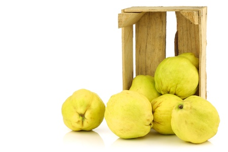 pectin: fresh quince fruits  Cydonia oblonga  in a wooden crate on a white background Stock Photo