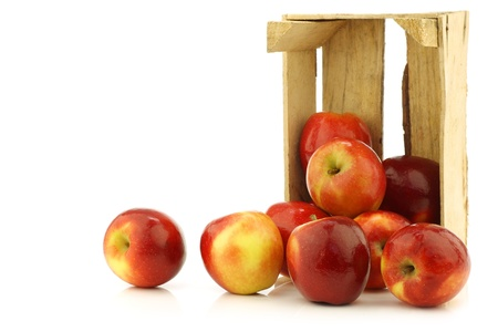 fresh Dutch  Jazz  apples in a wooden crate on a white background photo