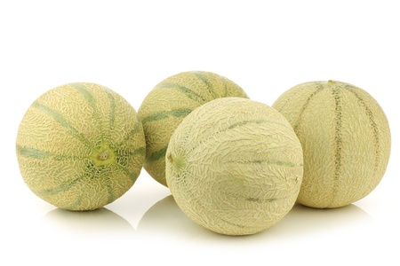 cantaloupe melons on a white background photo