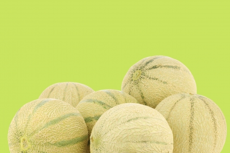 bunch of cantaloupe melons on a green background photo