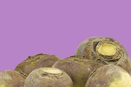 rutabaga: fresh red bell peppers  capsicum  on a purple background