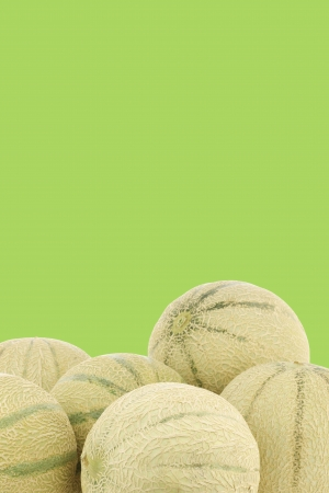 bunch of cantaloupe melons on a white background photo