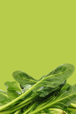 chinese spinach: fresh chinese spinach on a green background with copy space