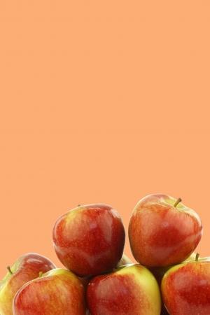 fresh Dutch braeburn apples on a orange background photo
