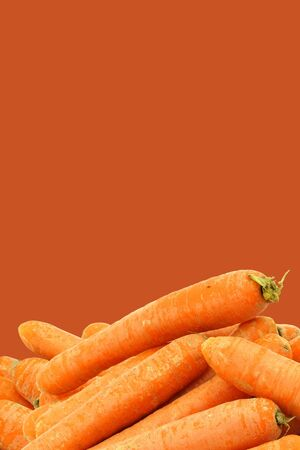 bunch of fresh winter carrots on a orange background photo