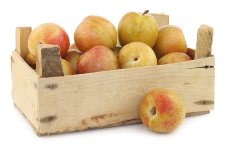 Fresh pluots  Prunus salicina × armeniaca  in a wooden crate on a white background  A pluot is a cross between an apricot and a plum  photo