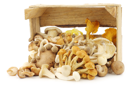 mixed freshly harvested mushrooms in a wooden crate on a white background 版權商用圖片