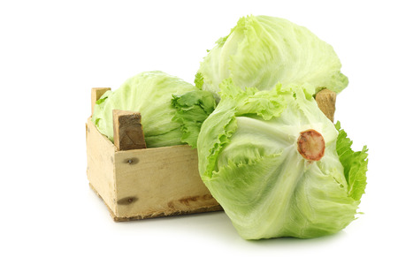 iceberg: fresh iceberg lettuce in a wooden crate on a white background