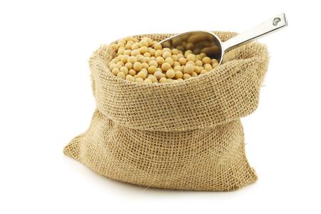 leche de soya: habas de soja en una bolsa de arpillera con una cuchara de aluminio sobre un fondo blanco Foto de archivo