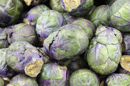 brussel: purple brussel sprouts background